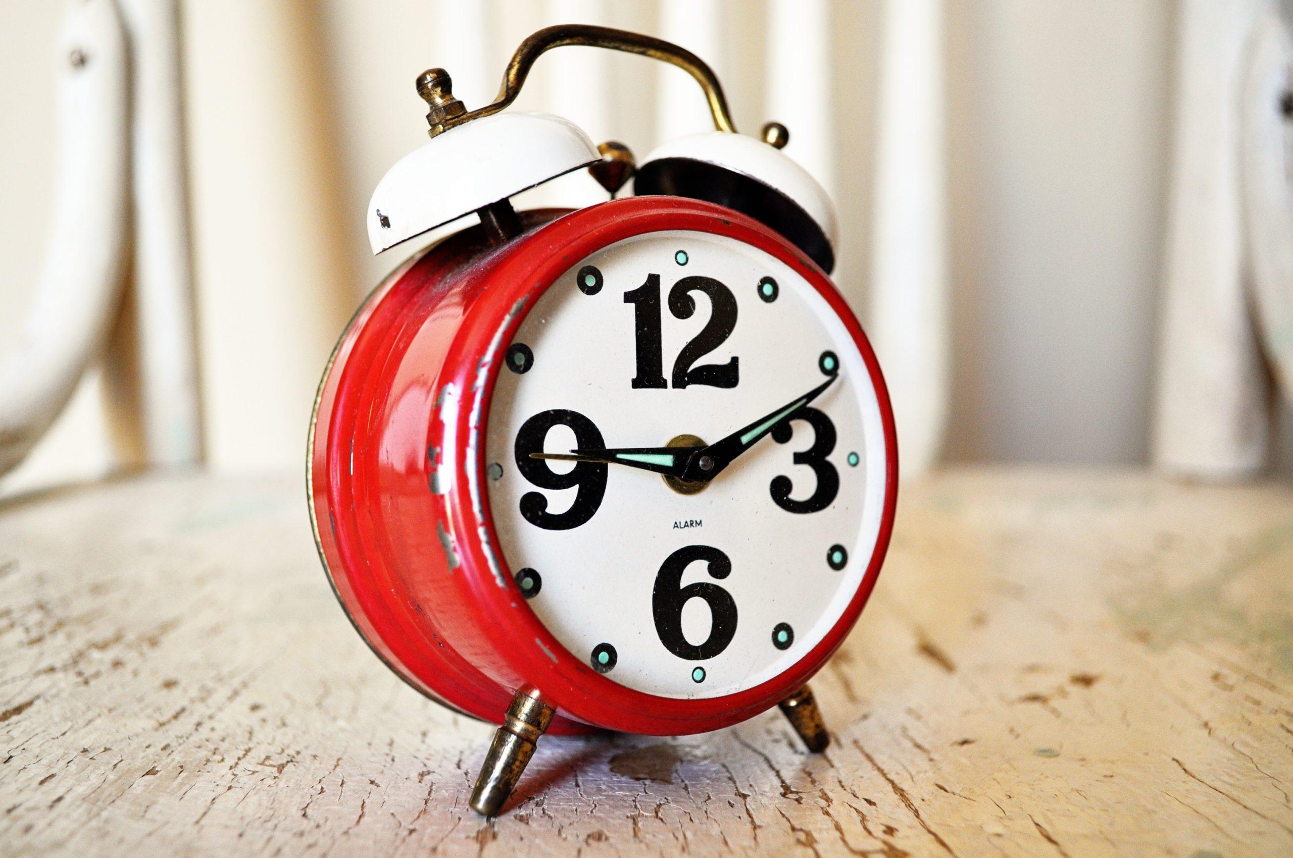 Foto Food Dynamics: Artikel Countdown!
