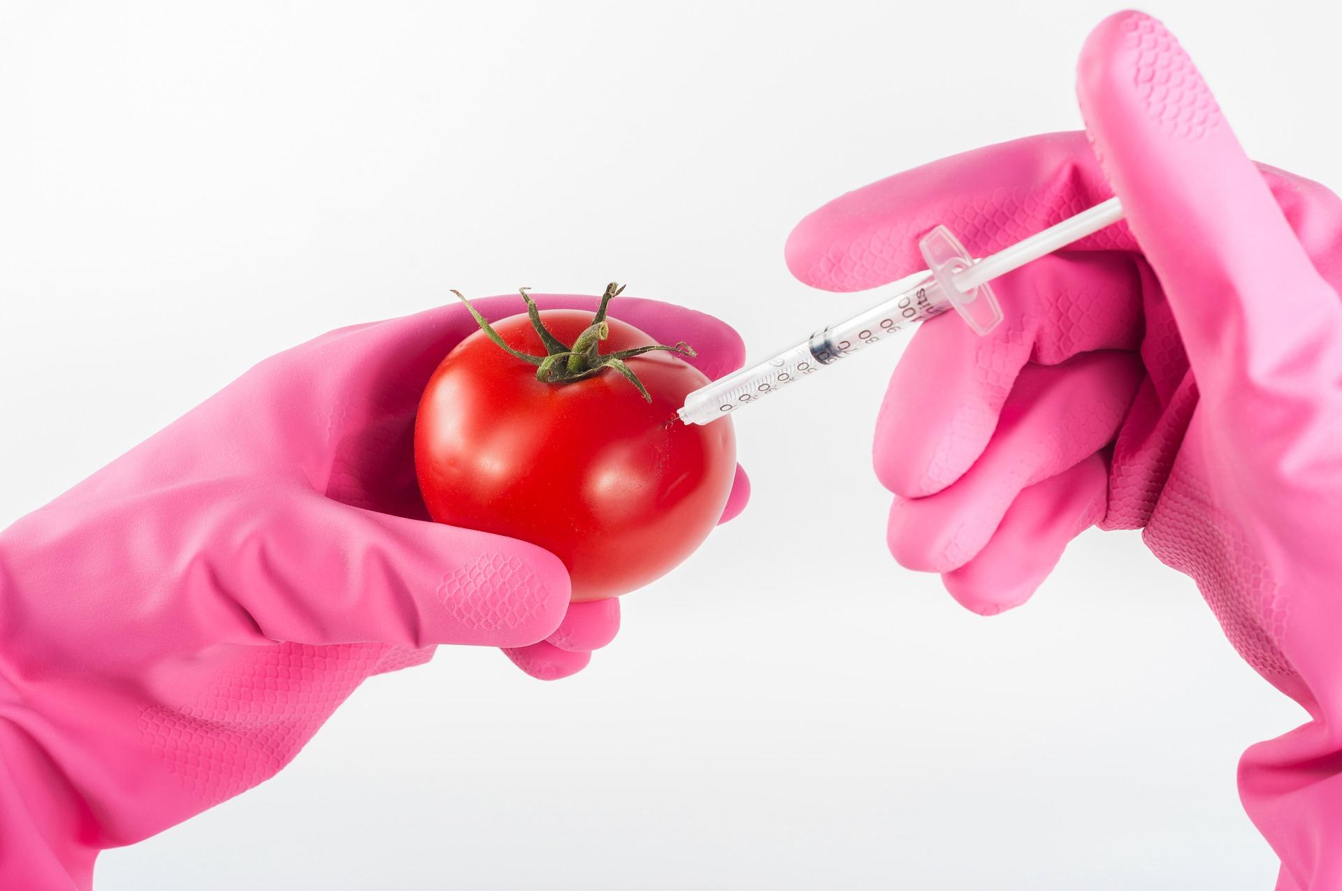 Foto Food Dynamics: Artikel Of ik wel eens pruts?